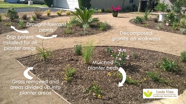 drought tolerant landscape by Linda Vista Landscape