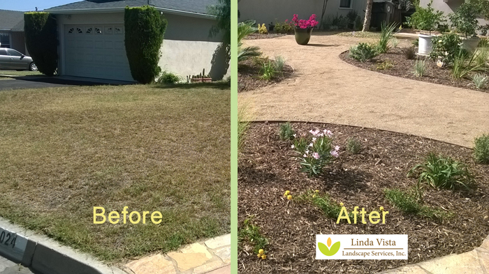 before and after drought tolerant landscape by Linda Vista Landscape