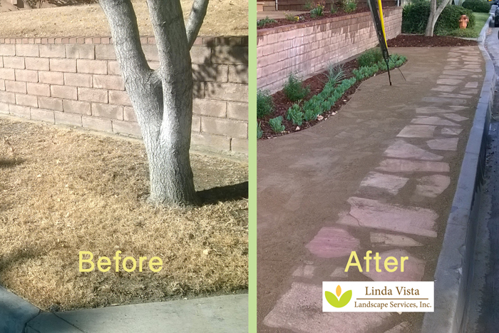 water conservation landscape before and after by Linda Vista Landscape