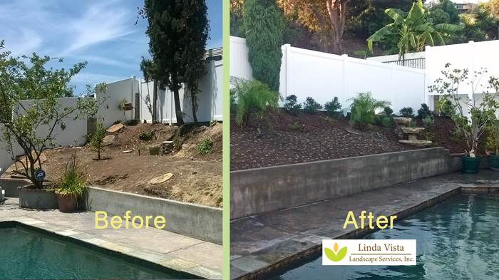 pooside drought tolerant landscaping by Linda Vista Landscape Services
