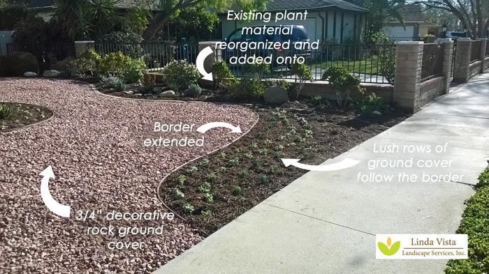 circular border drought tolerant landscape by Linda Vista Landscape