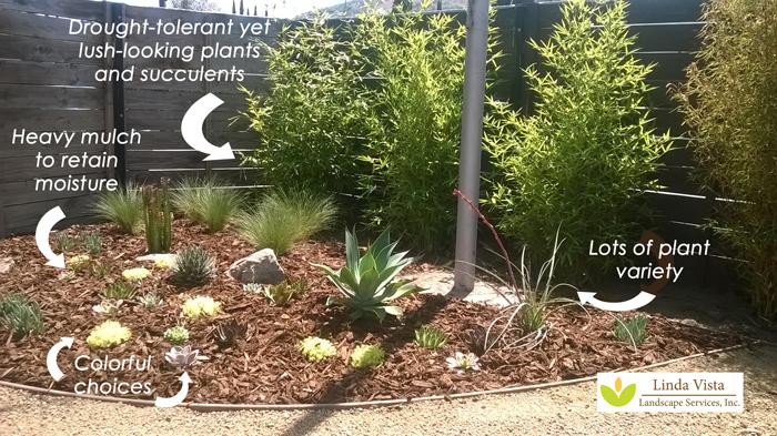 smart garden created by Linda Vista Landscape