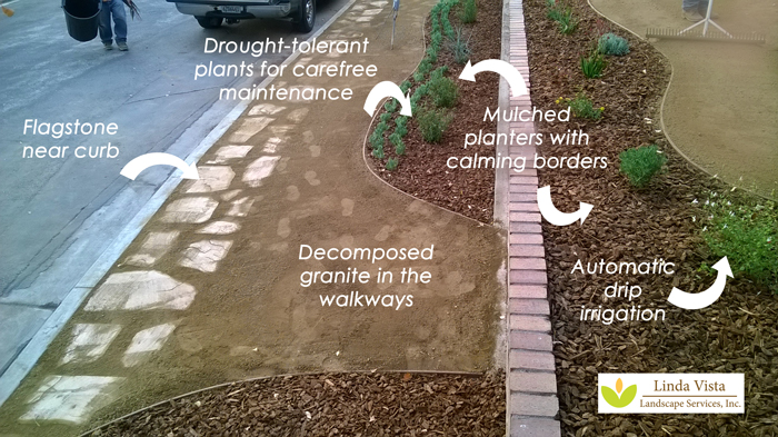 transformed water conserving landscape by Linda Vista Landscape