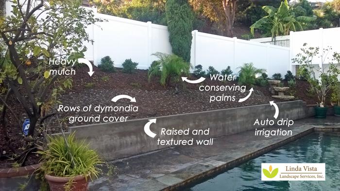 drough tolerant poolside landscape by Linda Vista Landscape Services