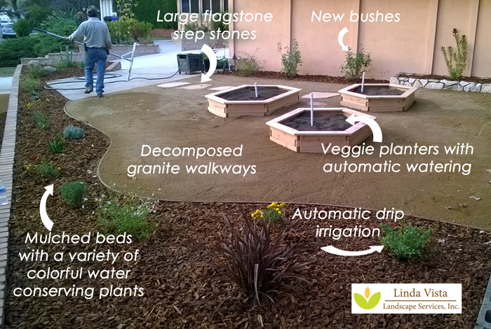 veggie garden with water conserving plants by Linda Vista Landscape