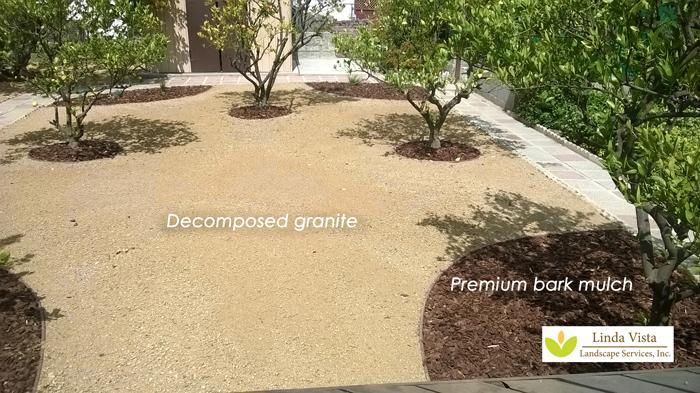 Decomposed granite and premium bark mulch in the California backyard orchard.