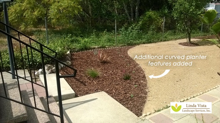 Before After Renovated California Backyard Orchard